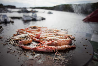 Image result for Delight in Lyngenfjord Local Culinary Flavour