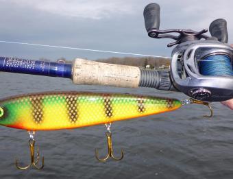 Spring Fishing 1B