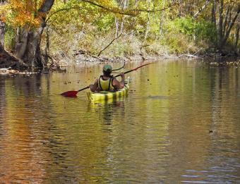 Rogue River Kayak