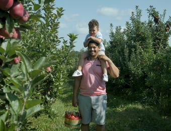 Apple picking at Bloks