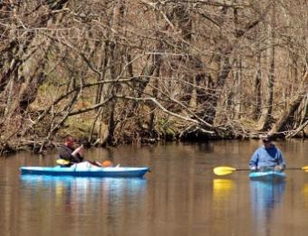 Rogue River Paddlers