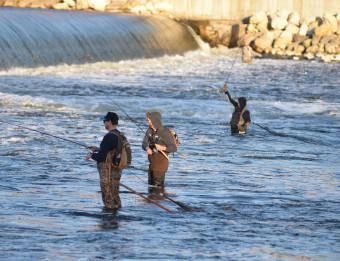 Grand River fall fishing 1