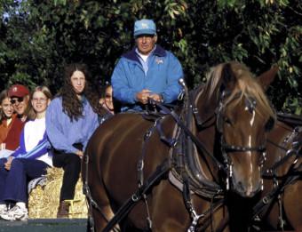 hayride at orchard