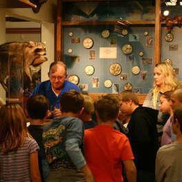 John Hutchings Museum