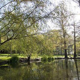 BYU Botany Pond & Ground