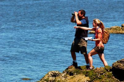 Couple on Birding Trail 2