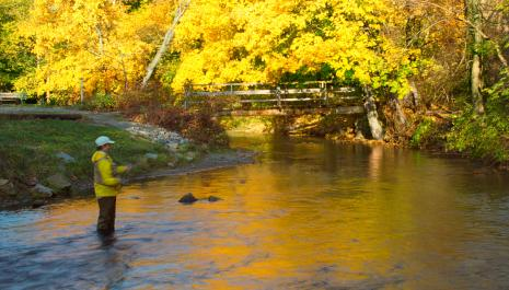 Fishing on Yellow Breeches Creek