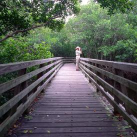 Birdwatcher - Ponce de Leon Park