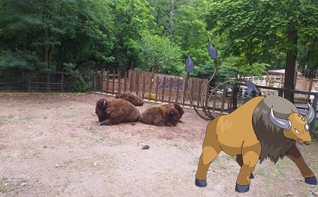 PokeMontco: Catch Em' All at the Elmwood Park Zoo!