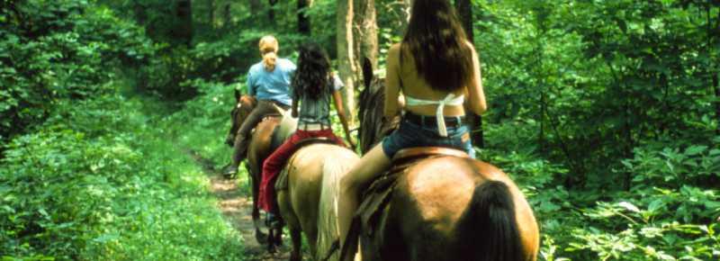 Horseback Riding at the Indiana Dunes