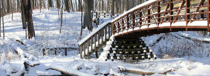 Winter Indiana Dunes