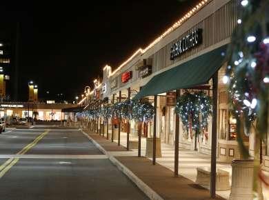 Stuyvesant Plaza Winter