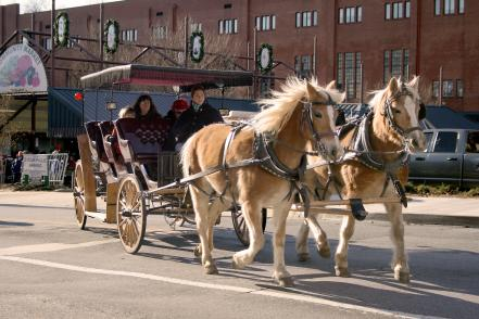 two horses pull a covered carriage in front of the lynchburg community market