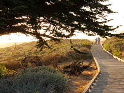 moonstone beach boardwalk