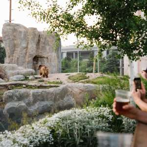 Zoo Brew: Cheers to Utah's Hogle Zoo
