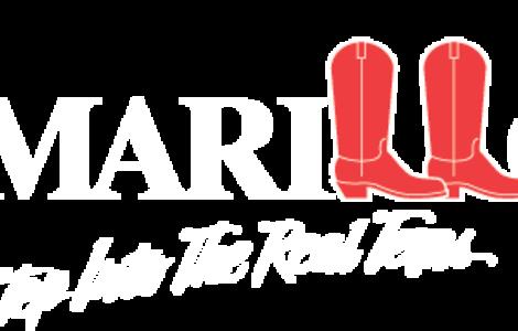 Amarillo CVC Transparent white logo