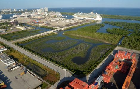 2016 Mangrove Enhancement Area Aerial