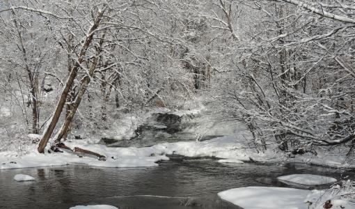 Snowy Delaware River