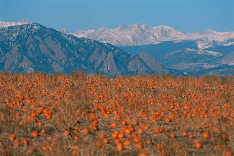 The Boulder County Farm Trail Scenic Drives Amp Tours