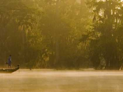The Atchafalaya