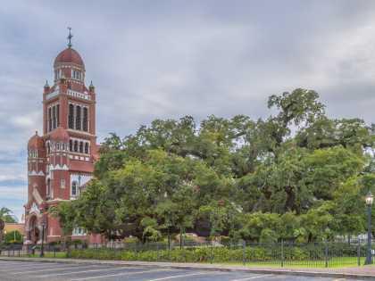 St. John Cathedral Oak