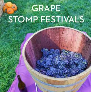 Grape Stomp Festivals