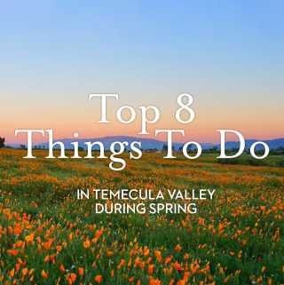 Top 8 Spring Things To Do in Temecula