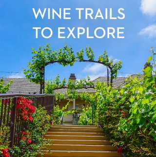 Wine Trails To Explore