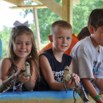 Tours - Hold a baby gator at the touch pool at Insta-Gator Ranch & Hatchery