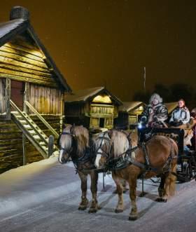 horse sleigh ride in Geilo