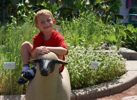 MSU 4H Children's Gardens