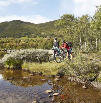 A couple biking the Ustedalsfjord Round in Geilo