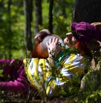 The fox has fallen asleep under the tree in Hakkebakkeskogen