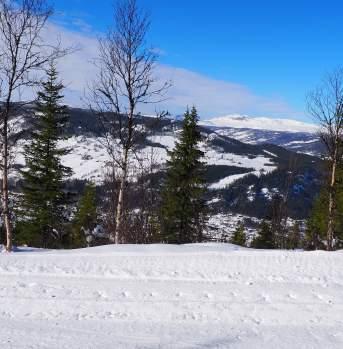 Skitur fra Blautmyrkroken til Ål sentrum, Ål i Hallingdal