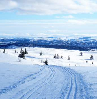 Cross-country trails at the topp of Ål Skicentre