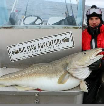 Winter fishing in Hasvik