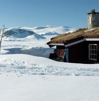 Cottage at Beitostølen