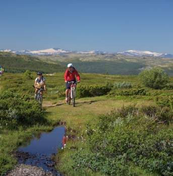 Bicycling by Høvringen