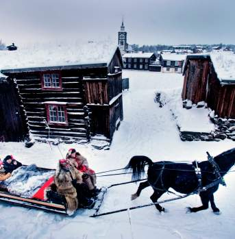Horse and sleigh at Røros