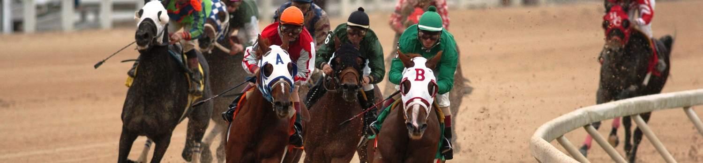 Gaming 5 Horse Racing