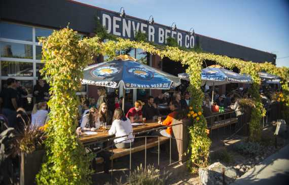 Denver Beer Company Patio Hops
