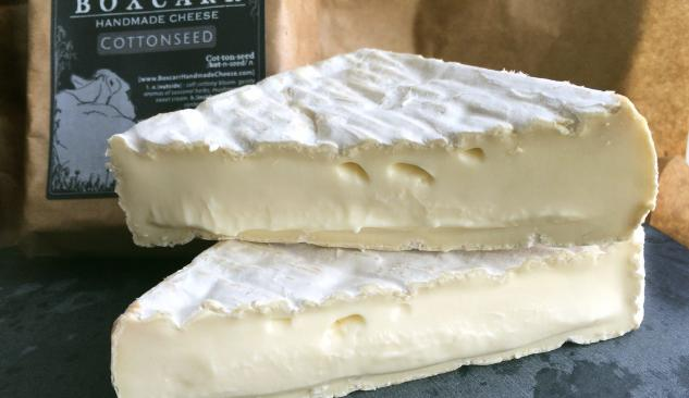 Cottonseed Cheese