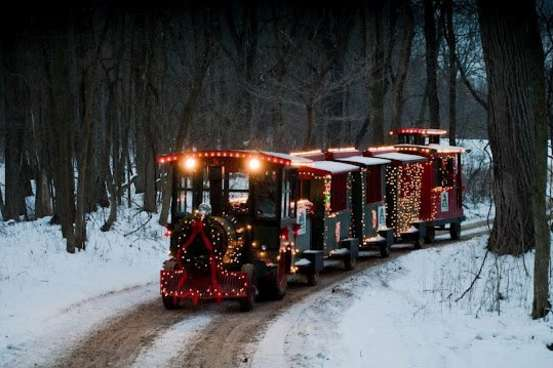 Peacock Christmas train