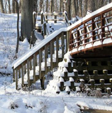 Indiana Dunes Trails in Winter