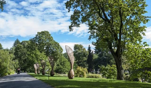 Botanisk hage, Oslo