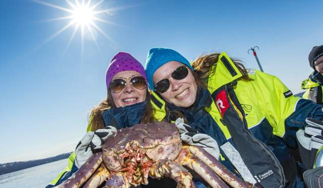 Excursion crabe royal avec Hurtigruten, Norvège