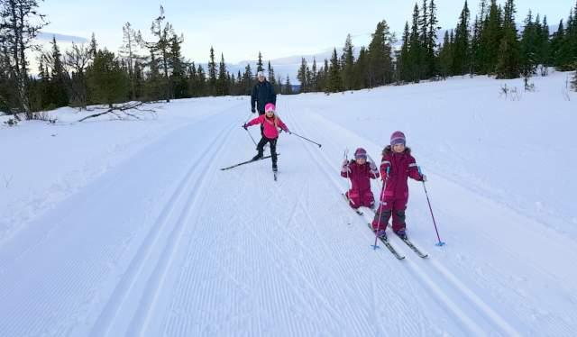 Skitur til blåbærhaugen på Veståsen, Ål i Hallingdal