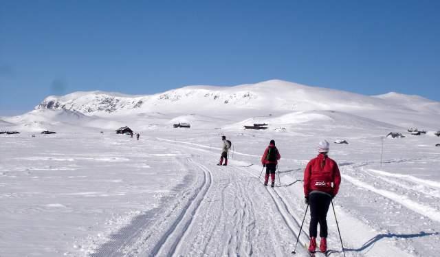 Skitur langs Reineskarvet, Ål i Hallingdal