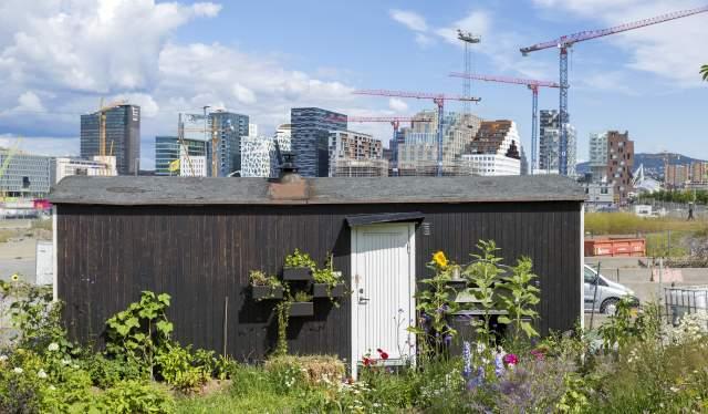 Losæter, Oslo