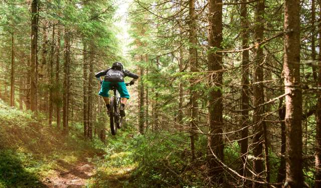 Trail cycling in a forest near Trysil